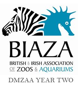 BIAZA Year 2 DMZAA