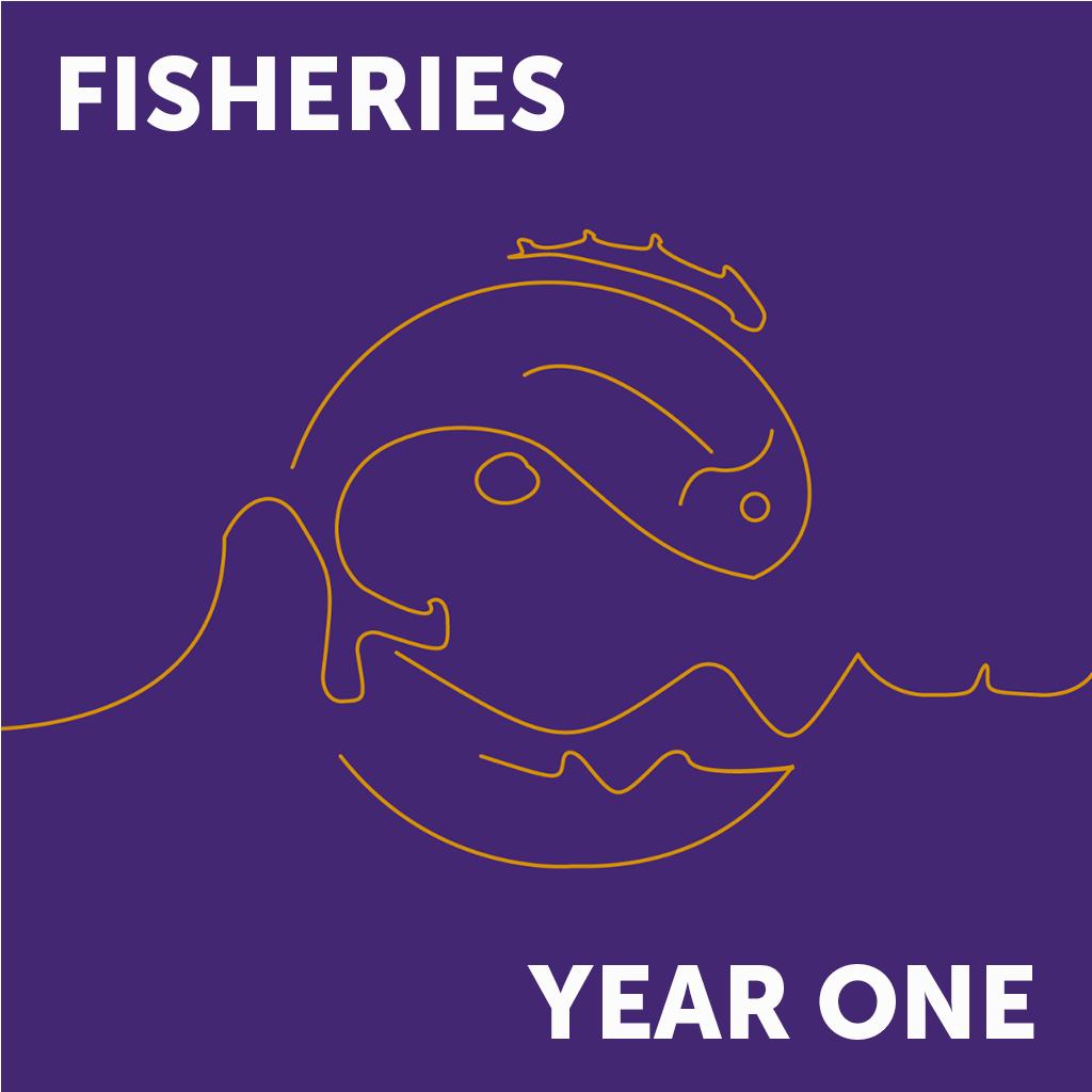 Fish Year 1