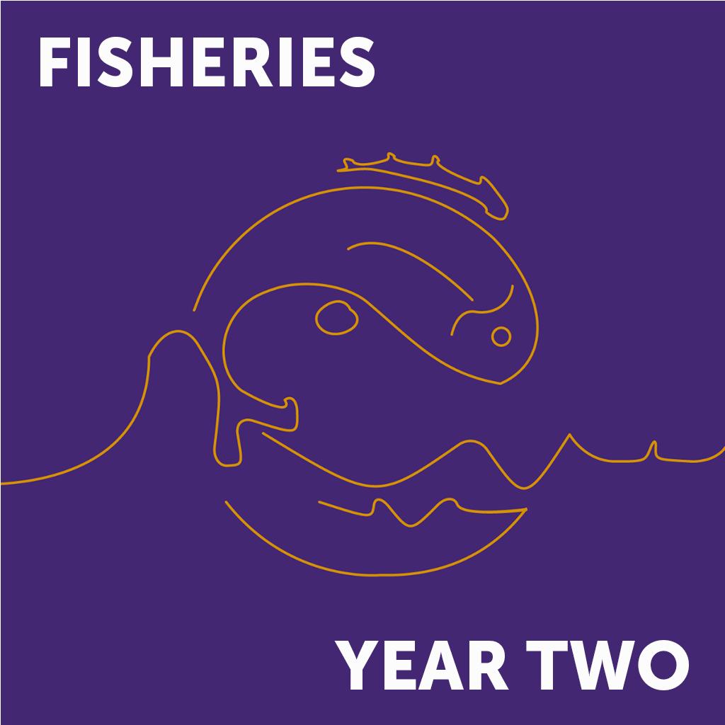 Fish Year 2