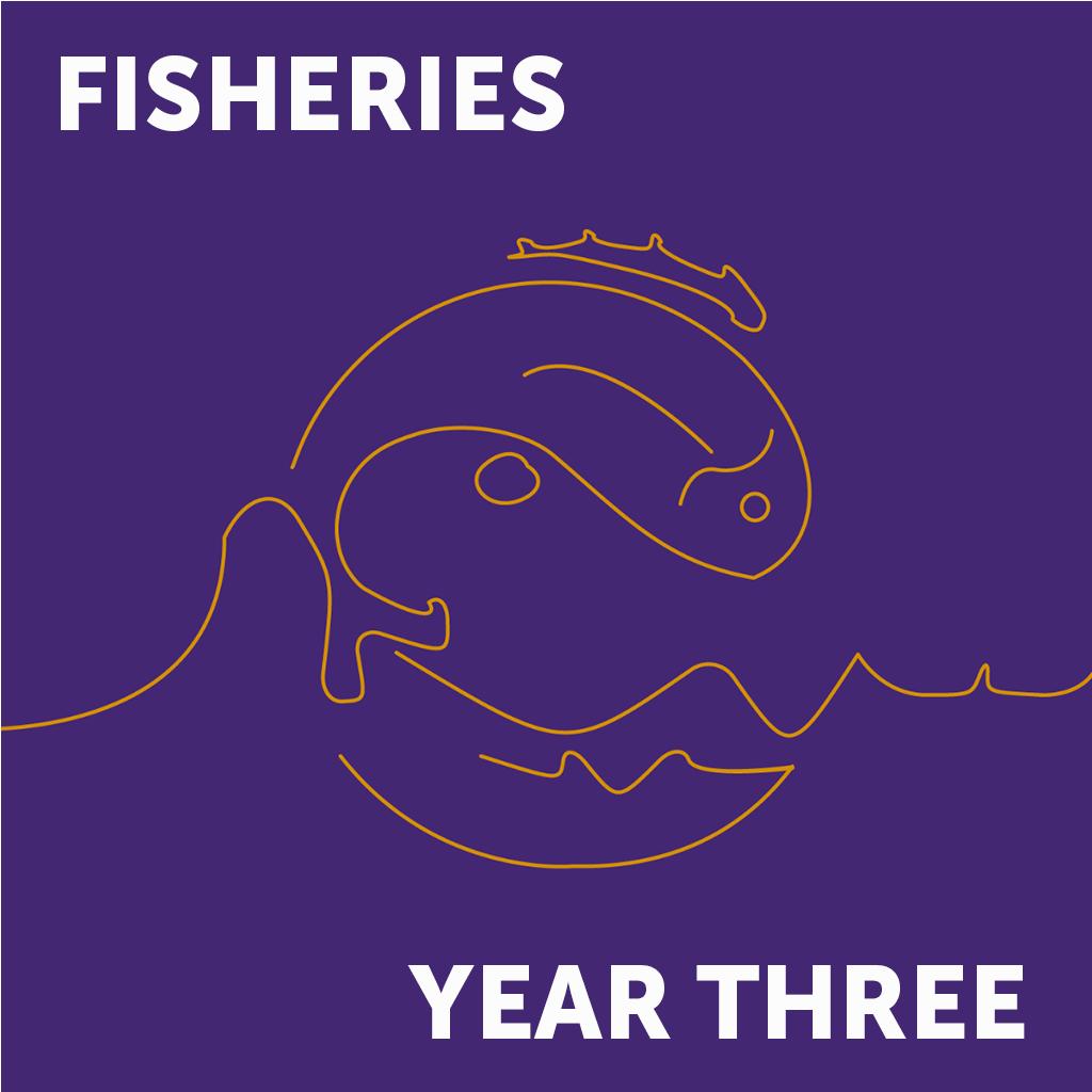 Fish Year 3