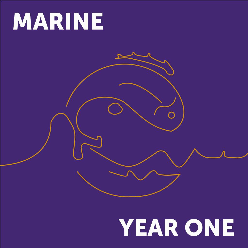 Marine Year 1