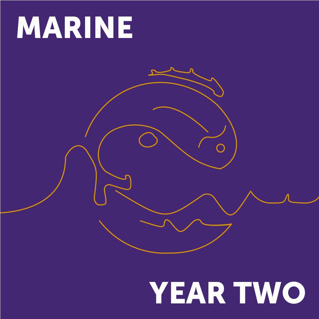 Marine Year 2