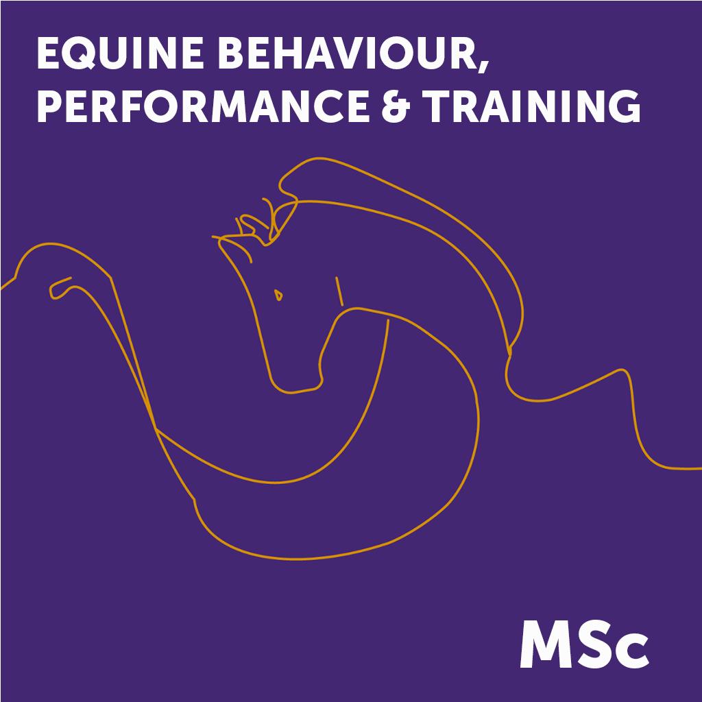 Equine MSc